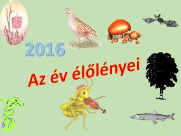 A_2016-os_ev_elolenyei